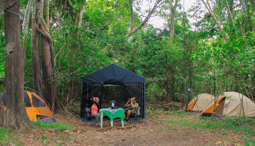 Expedición a la Reserva Nacional Pacaya Samiria 4 días